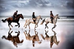 Horse ride on Tramore May