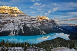 Peyto at dawn