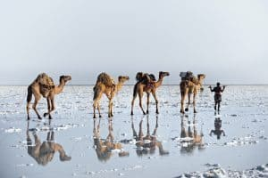 Reflections in Danakil