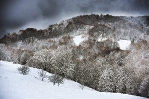 A veneer of Snow
